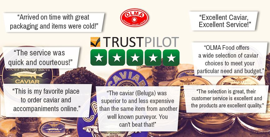 Trustpilot-Logo-and-5-stars-3